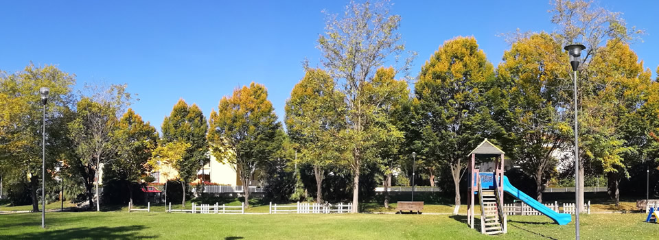 Quartiere Salaria